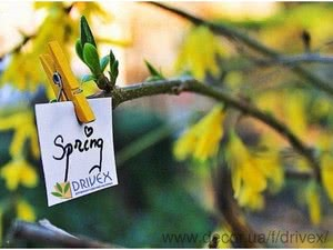 Весна в Драйвексе — Драйвекс