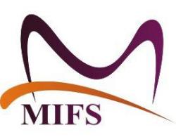 MIFS 2013